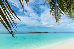 Beautiful beach. View of nice tropical beach with palms around. Royalty Free Stock Image