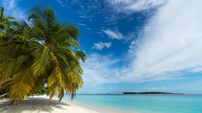 Beautiful beach. View of nice tropical beach with palms around. Stock Images