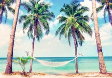 Beautiful beach. View of nice tropical beach with palms around. Holiday and vacation concept.  Tropical beach. Beautiful tropical island in Thailand Stock Image
