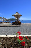 Beautiful beach view Stock Photos
