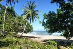The beautiful beach of white sand , the sea and trees . Stock Photography