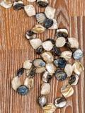 Beautiful beads Stock Photography