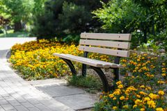 Beautiful bench in the park. Flower bed Royalty Free Stock Photography