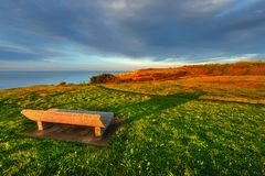 Beautiful bench in a park near the sea royalty free stock photography
