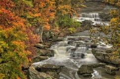 Beautiful Berea Falls In Autumn Stock Photography
