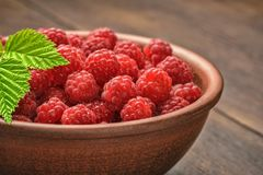 Beautiful berries of a garden of a red raspberry, green leaves of a crimson branch.  Stock Images