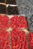 Beautiful berries Stock Photo