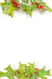 Beautiful berry christmas frame royalty free stock images