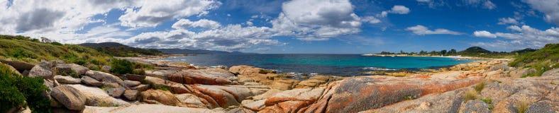 Beautiful bicheno Stock Photography