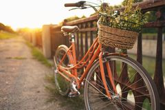 Beautiful bicycle with flowers in a basket stands on the street Royalty Free Stock Photos