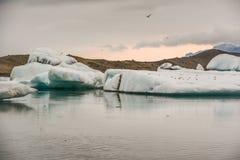 Beautiful big blue iceberg floating in Jokulsarlon glacial, Icel royalty free stock images