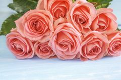 Celebration concept with beautiful bunch of pink rose flowers royalty free stock photography