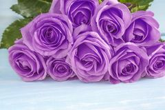 Celebration concept with beautiful bunch of purple rose flowers stock image