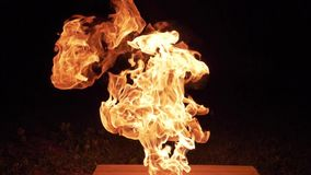 Beautiful Clear Flames. Beautiful Big Clear Flames During Night stock footage