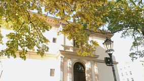 Beautiful big tree with autumn yellow leaves in front of the old villa, tree with yellow leaves on the background of an. Old building and a street lamp, Autumn stock video