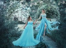 A beautiful big woman is holding a fragile blonde girl in her hand. Two princesses in luxurious blue dresses against the. A beautiful big women is holding a stock photos
