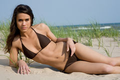 Beautiful bikini at the dunes. Young woman poses wearing cute brown bikini Royalty Free Stock Photos