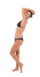 Beautiful bikini woman Royalty Free Stock Images