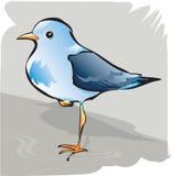 Beautiful bird Royalty Free Stock Photos