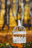 Beautiful bird cage in autumn forest Royalty Free Stock Photos