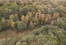 Beautiful bird`s eye view drone landscape image during Autumn Fall of vibrant forest woodland stock photo
