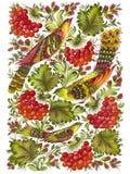 Beautiful birds. Hand drawn, , illustration in Ukrainian folk style vector illustration