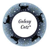 Beautiful black cats strolling through the starry sky. Beautiful black striped cats strolling through the starry night sky. In the night starry sky, the Stock Photography