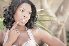 Beautiful black female Stock Photography