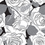 Beautiful black, gray and white rose flower, seamless pattern. Botanical hand drawn silhouette. Flat stylization color. Vector illustration Royalty Free Stock Photo