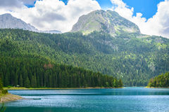 Beautiful Black Lake, Green Forest and Beautiful Mountains in the Morning. National Park Durmitor, Montenegro Royalty Free Stock Photos