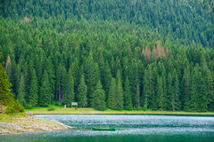 Beautiful Black Lake, Green Forest and Beautiful Mountains in the Morning. National Park Durmitor, Montenegro Royalty Free Stock Photography
