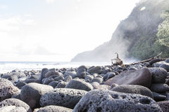 Beautiful black stone beach - waipio valley, hawaii Royalty Free Stock Photos