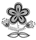 Beautiful black-and-white flower, hand drawing Stock Image