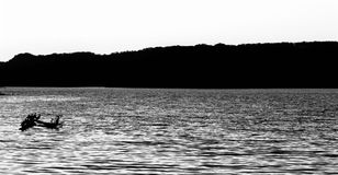 Beautiful black and white landscape of the lake with the birds Stock Photos