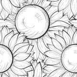Beautiful black and white seamless background with sunflowers Royalty Free Stock Photos