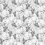 Beautiful black and white seamless pattern in alstroemeria with contours. Royalty Free Stock Images