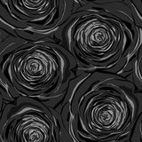 Beautiful black and white seamless pattern in roses Royalty Free Stock Photography