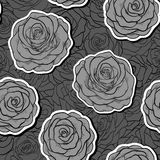 Beautiful black and white seamless pattern in roses with contours. Stock Photography