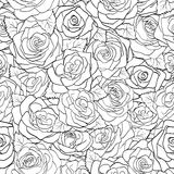 Beautiful black and white seamless pattern in roses with contours. Royalty Free Stock Images