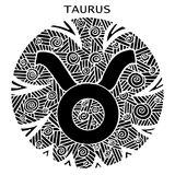 Hand drawn. Zodiac sign Taurus. Vector illustration. Beautiful black and white zodiac sign taurus. Vector illustration, hand drawing Royalty Free Stock Images
