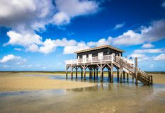 Beautiful house in the basin of Arcachon. Beautiful black wood house on stilts in the basin of Arcachon on the island with birds Stock Image