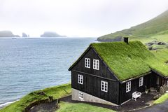 Beautiful black wooden house with green grass on the roof, sea s