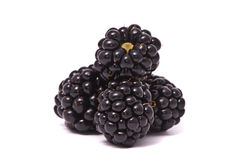Beautiful blackberries stock photo