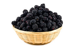 Beautiful blackberries  in basket  on white Royalty Free Stock Photos