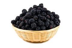 Beautiful blackberries  in basket  on white Royalty Free Stock Photos