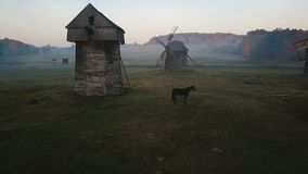 Beautiful blackhorse on field between mills. Countryside foggy morning. horse grazes in a clearing with a mill. Beautiful rural mood scene. mystical and stock footage