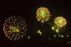 Beautiful blasted firecrackers Stock Photography