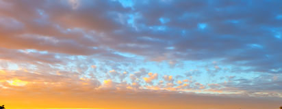 Beautiful blazing sunset landscape at over the meadow and orange sky above it. Amazing summer sunrise as a background. Royalty Free Stock Photos