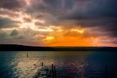 Beautiful blazing sunset, landscape at Varna lake near the black Stock Images