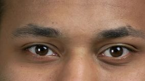 Beautiful blinking male eyes close up. Detail view of Indian mans face with brown eyes stock video footage